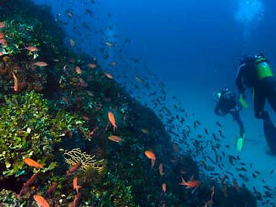 Spanish & Scuba-diving at Cabo de Gata