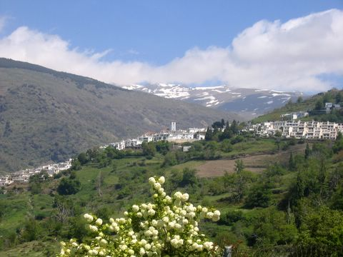 The Alpujarras in springtime